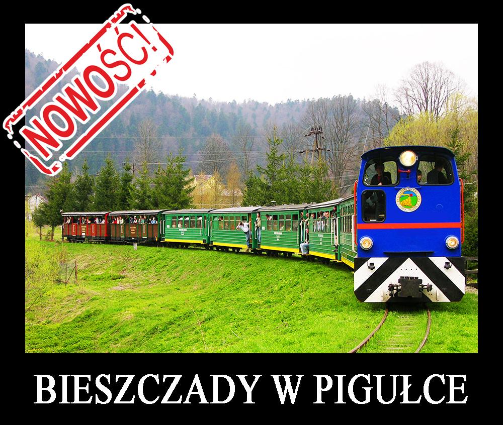 Wycieczka jednodniowa BIESZCZADY W PIGUŁCE, czyli podróż śladami serialu kryminalnego Wataha....jpg