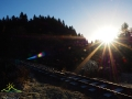 Początek wędrówki szlakiem czerwonym w Cisnej - Siekierezada, wiadukt kolejki leśnej i w prawo pod górkę.