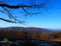 Panorama spod drzew w stronę granicy i na szczyty po stronie Słowackiej. Na pierwszym planie pasmo górskie z Rosochą 1084m i Hyrlatą 1103m.