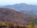 A wszczędzie góry i czegóż więcej potrzeba... Kolejny zdjęcie z charakterystycznymi kształtami Łopiennika.