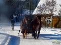 Kulig z końmi w Turzańsku.