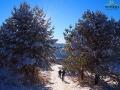 Wędrówka na rakietach po szlaku niebieskim biegnącym od Sanoka do góry Chryszczata 997m.