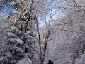 Turysta wędrujący po szlaku niebieskim na rakietach śnieżnych.