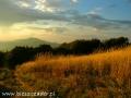 W promieniach zachodzącego słońca na szlaku na Połoninie Wetlińskiej w Bieszczadach.