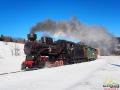 Ciuchcia parowa jadąca z turystami w stronę Balnicy zimą w Żubraczem.