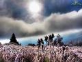 Przedzierające się przez mgłę słońce nad Bieszczadami.