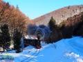 Bieszczadzka ciuchcia przedzierająca się między górami porośniętymi głównie buczyną karpacką.