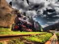 Bieszczadzka Kolejka Leśna