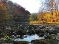 Widok na wiadukt ciuchci w Duszatynie znad rzeki Osława.