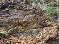 Flisz karpacki widziany z torów bieszczadzkiej kolejki leśnej idąc do wiaduktu.