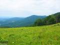 Widok ze szlaku niebieskiego na m.in. RYPI WIERCH 1003m i w stronę Słowacji.