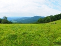 Jeszcze raz widok z polany w paśmie granicznym w pobliżu Roztok Górnych, ale panoramicznie w stronę m.in. Rypiego Wierchu. Po prostu uwielbiamy to miejsce...