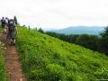 Turyści na zboczach góry Fereczata 1102m z widokiem na góry w paśmie granicznym.