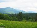 Widok z miejscowości Smerek na pasmo Połoniny Wetlińskiej, a w oddali również Połoninę Caryńską.