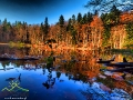 Magia Jeziorek Duszatyńskich nie zna granic tylko potrzeba dużo czasu na ich zauważenie i zrobienie zdjęcia ;-)