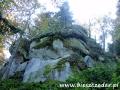 Kamień nad Rzepedzią - skupisko skał piaskowcowych na 1,5 km!