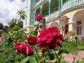 Klasztor sióstr nazaretanek w KOMAŃCZY - zawsze skąpany w morzu kwiatów