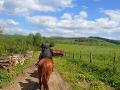 Wyjeżdżamy ze stadniny koni w stronę rzeki Osława.