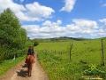Jak to powiedziała Madzia: Świat z grzebietu konia wygląda zupełnie inaczej...