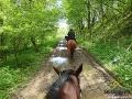 Wjechaliśmy w las i grzywa konia się zjeżyła...