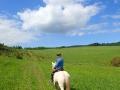 Współwłaściciel Ośrodka Jeździeckiego Tarpan DAMIAN na swoim koniu podczas jazdy w terenie.