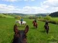 Damian w celowniku - między uszami konia Werita.
