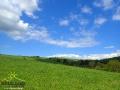 Widok w stronę Białej Góry nad miejscowością Kulaszne.