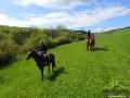 Jeszcze kilkaset metrów i koniec jazdy konnej w dniu dzisiejszym...