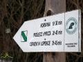 Początek szlaku turystycznego koloru zielonego na końcu miejscowości Bukowiec wyznaczonego przez leśników.