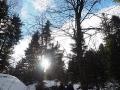 Wędrówka po północnych zboczach na górę Korbania w jeden z zimowych dni. Pokrywa śnieżna wynosiła średnio 0,5m.