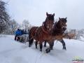 Tradycyjny kulig z końmi po Bieszczadach...