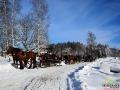 Zima zaczęła się już końcem listopada i trwa już 2 miesiące! A gdzie jeszcze do marca...