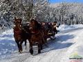 Kulig po Bieszczadach jest jedną z wielu atrakcji czekających na turystów zimą w Bieszczadach!
