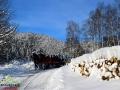 Kulig w dolinach pośród zaśnieżonych bieszczadzkich lasów...