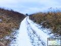 W kilku miejscach przeprawiamy się przez wąwozy, którymi na przełomie XIX i XX wieku jeździła bieszczadzka kolejka leśna.