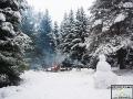 Miejsce na ognisko znajduje się pośród potężnych świerków, które w zimie wyglądają magicznie...