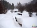 Sanie z końmi powoli dojeżdżają do leśnej polany pośród metrów drzewa, które zostało przykryte grubą warstwą śniegu.