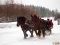 Koniki z turystami na saniach dojeżdżają do Mikowa na ognisko z kiełbaskami.