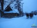 Jadąc na saniach przez Smolnik turyści podziwiają kilkadziesiąt tradycyjnych chyży łemkowskich!