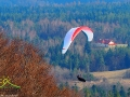 Lot paralotnią ponad lasem w Bieszczadach.