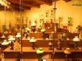 Część kolekcji LAMP NAFTOWYCH w Domu Łukasiewicza w skansenie w Bóbrce.
