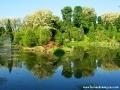 Arboretum w Bolestraszycach wiosną (okolice Przemyśla).