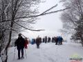 Grupa wchodząca na wędrówkę na rakietach śnieżnych po lesie bukowym.