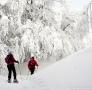 Na szlaku na Połoninę Wetlińską na rakietach śnieżnych.