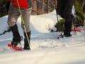 Wędrówki w rakietach śnieżnych w Bieszczadach.