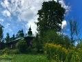 Rudbekia kwitnąca na zboczach góry poniżej cerkwi w Szczawnem.