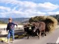Wycieczka do Rumunii - listopad 2010!