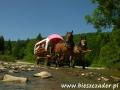 Przygoda w BIESZCZADACH - prawdziwe dzikie Bieszczady - przejazdy wozami przez rzeki
