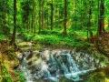 Największa kaskada na potoku Olchowym zwanym także Olchowatym.