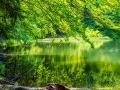 Tędy 4-krotnie wędrował Karol Wojdyła, a 2-krotnie nad górnym Jeziorkiem Duszatyńskim odprawiał mszę świętą.